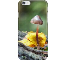 Tiny Toadstool in Woodland Setting iPhone Case/Skin