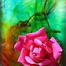 Rose Swirl by Leanne Allen