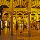 Arches and Pillars of The Mezquita, Cordoba, Spain by TonyCrehan