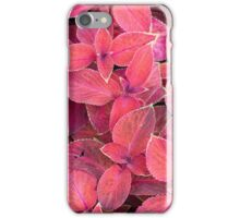 Decorative red plants iPhone Case/Skin