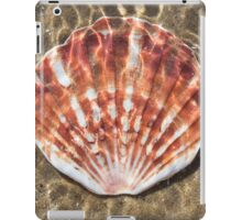 Seashell - Scallop iPad Case/Skin