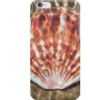Seashell - Scallop iPhone Case/Skin