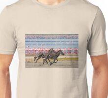 Racing Stripes Unisex T-Shirt