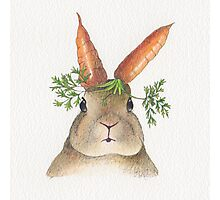 Surreal Rabbit with Carrot Ears Photographic Print