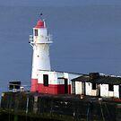 Newlyn Lighthouse by nealbarnett
