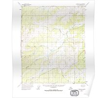 USGS TOPO Map Alaska AK Livengood B-5 357117 1952 63360 Poster