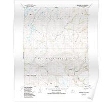 USGS TOPO Map Alaska AK Bendeleben D-4 354348 1950 63360 Poster