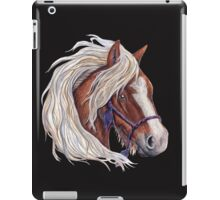 The Winds Touch iPad Case/Skin