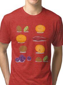 Funny Fruits Fun Pack Tri-blend T-Shirt