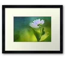 Above all, infinity...  Framed Print