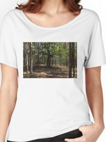 Surrounded - an Ancient Beech Tree in a Pine Forest Women's Relaxed Fit T-Shirt