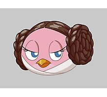 Leia the mediumly angry bird Photographic Print