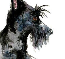 Scottish Terrier Dog by archyscottie