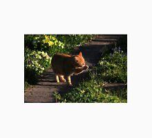 Ginger cat licking paw Unisex T-Shirt