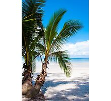 Beautiful tropical beach Photographic Print