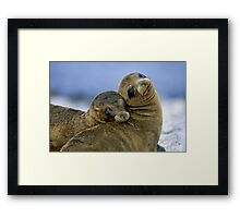 Sweethearts Framed Print