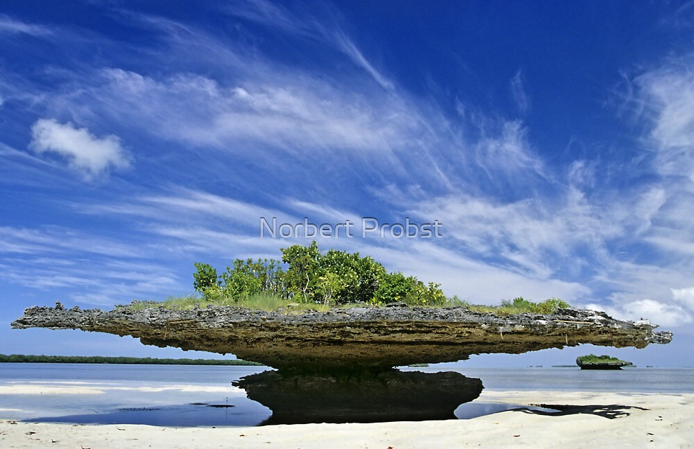 In Balance by Norbert Probst