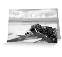 Fallen palm tree in black and white Greeting Card