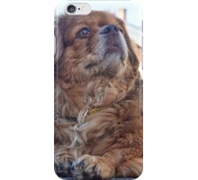 Chiffon assis 3-4 face_7170078 iPhone Case/Skin