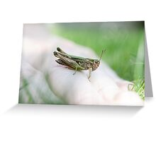 Quickly Greeting Card