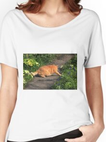 Ginger cat hunting on garden path Women's Relaxed Fit T-Shirt