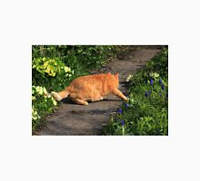 Ginger cat hunting on garden path Unisex T-Shirt