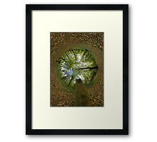Butterfly Sculpture in Prehen Woods, Derry (Sky-in) Framed Print