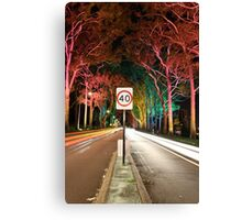 Light Speed  Canvas Print