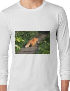 Ginger cat hunting on garden path Long Sleeve T-Shirt
