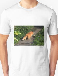 Ginger cat hunting on garden path Unisex T-Shirt