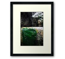 Japanese Fountain Framed Print