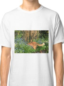 Ginger cat hunting in garden Classic T-Shirt