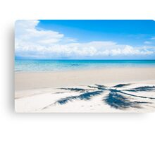 Shadow of palm tree over tropical white sand beach Canvas Print