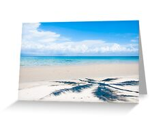 Shadow of palm tree over tropical white sand beach Greeting Card