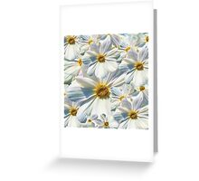 marguerites, daisy Greeting Card