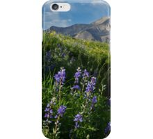 Mountain Lupines iPhone Case/Skin