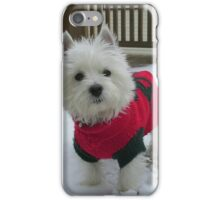 Winnie in the Snow iPhone Case/Skin
