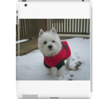Winnie in the Snow iPad Case/Skin