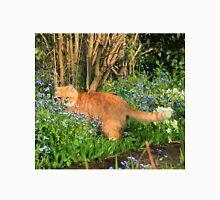 Ginger cat hunting in garden Unisex T-Shirt