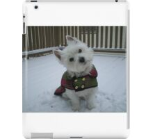 Winter Winnie iPad Case/Skin