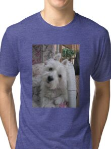 Summer Winnie Tri-blend T-Shirt
