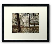 The Frozen Marsh Framed Print