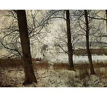 The Frozen Marsh Photographic Print
