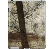 The Frozen Marsh iPad Case/Skin