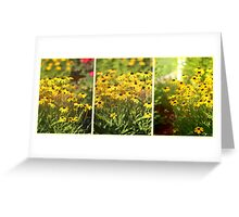 When Susans Smile - Black Eyed Susan Triptych Greeting Card