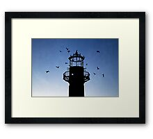 Cormorants Roosting on the Lighthouse Framed Print