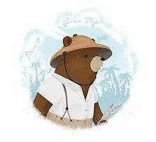 Bear Adventures Photographic Print