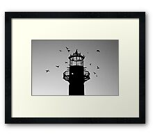 Cormorants Coming Home to Roost Framed Print