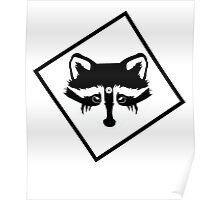 Commander Raccoon Eyes Poster