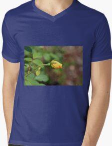 A Wilder Rose Mens V-Neck T-Shirt